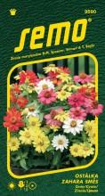 HOBBY, Květiny letničky - Ostálka Zahara Mix, 9590 (Zinnia marylandica)