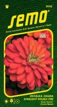 HOBBY, Květiny letničky - Ostálka Zahara Starlight Double Fire, 9592 (Zinnia marylandica)