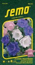 HOBBY, Květiny trvalky - Zvonek prostřední Cup and Saucers směs, 9610 (Campanula medium)