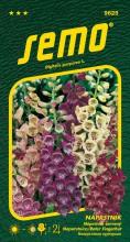 HOBBY, Květiny trvalky - Náprstník červený Excelsior směs, 9625 (Digitalis purpurea)