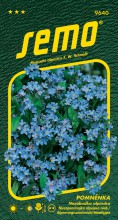 HOBBY, Květiny trvalky - Pomněnka modrá, 9640 (Myosotis alpestris)