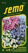 HOBBY, Květiny trvalky - Pomněnka směs, 9641 (Myosotis alpestris)