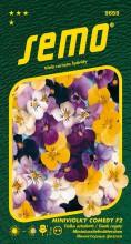 HOBBY, Květiny trvalky - Miniviolka Comedy F2, 9659 (Viola cornuta hybridy)