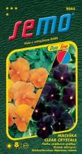 HOBBY, Květiny trvalky - Maceška zahradní velkokvětá Clear Crystals, 9662 (Viola x witrockiana)