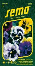 HOBBY, Květiny trvalky - Maceška zahradní velkokvětá Frilly F1, 9663 (Viola x witrockiana)