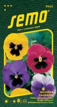 HOBBY, Květiny trvalky - Maceška zahradní velkokvětá směs s okem, 9665 (Viola x witrockiana)