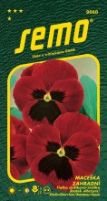 HOBBY, Květiny trvalky - Maceška zahradní velkokvětá červená, 9668 (Viola x witrockiana)