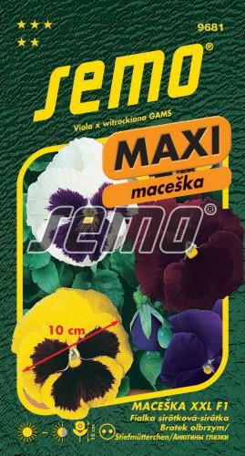 HOBBY, Květiny trvalky - Maceška zahradní velkokvětá XXL, 9681 (Viola x witrockiana)