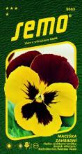 HOBBY, Květiny trvalky - Maceška zahradní velkokvětá Mistral S1 žluto červená, 9683 (Viola x witrockiana)