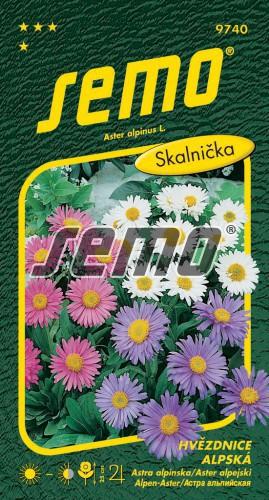 HOBBY, Květiny trvalky - Hvězdnice alpská směs barev, 9740 (Aster alpinus)