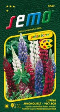 HOBBY, Květiny trvalky - Lupina mnoholistá (Vlčí bob) směs barev, 9847 (Lupinus polyphyllus)