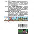 HOBBY, Květiny trvalky – Lupina mnoholistá (Vlčí bob) směs barev, 9847