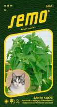 HOBBY, Květiny trvalky - Šanta kočičí Cat Grass, 9852 (Nepeta cataria)