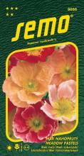 HOBBY, Květiny trvalky - Mák nahoprutý Meadow Pastels, 9856 (Papaver nudicaule L.)