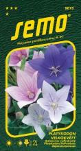 HOBBY, Květiny trvalky - Platykodon velkokvětý Mixed, 9875 (Platycodon grandiflorus)