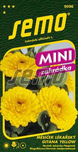 HOBBY, Květiny letničky - Měsíček lékařský Gitana yellow, 9096 (Calendula officinalis)