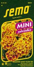 HOBBY, Květiny letničky - Aksamitník rozkladitý Safari yellow fire, 9541 (Tagetes patula)