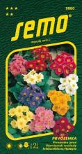 HOBBY, Květiny trvalky - Prvosenka jarní směs, 9880 (Primula veris L.)