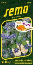 HOBBY, Květiny letničky - Brutnák lékařský, 9071 (Borago officinalis)