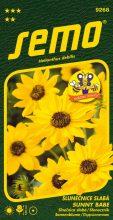 HOBBY, Květiny letničky - Slunečnice slabá Sunny Babe, 9268 (Helianthus debilis)