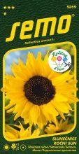HOBBY, Květiny letničky - Slunečnice roční Sun, 9269 (Helianthus annuus L.)