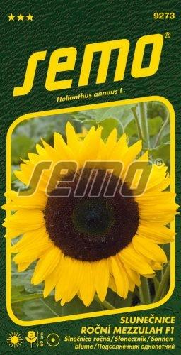 HOBBY, Květiny letničky - Slunečnice roční Mezzulah F1, 9273 (Helianthus annuus)