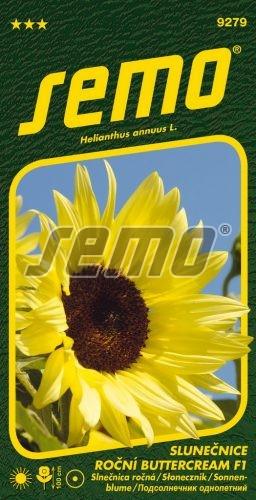 HOBBY, Květiny letničky - Slunečnice roční Buttercream F1, 9279 (Helianthus annuus)