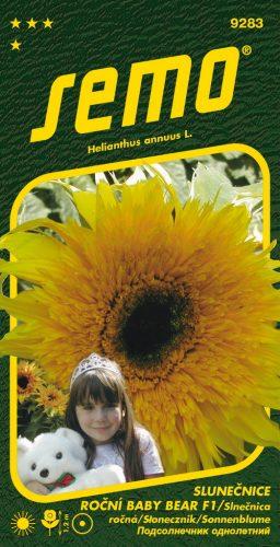HOBBY, Květiny letničky - Slunečnice roční Baby Bear F1, 9283 (Helianthus annuus)