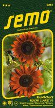 HOBBY, Květiny letničky - Slunečnice roční Claret F1, 9285 (Helianthus annuus)