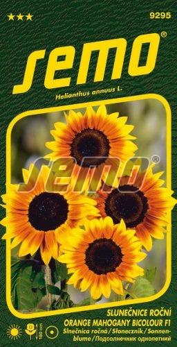 HOBBY, Květiny letničky - Slunečnice roční Orange Mahogany Bicolour F1, 9295 (Helianthus annuus)