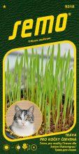 HOBBY, Květiny letničky - Tráva pro kočky Červená, 9318 (Triticum aestivum)