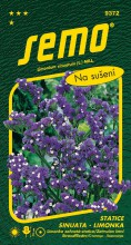 HOBBY, Květiny letničky - Statice sinuata (limonka) Dark Blue, 9372 (Limonium sinuatum)