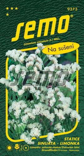 HOBBY, Květiny letničky - Statice sinuata (limonka) White, 9373 (Limonium sinuatum)