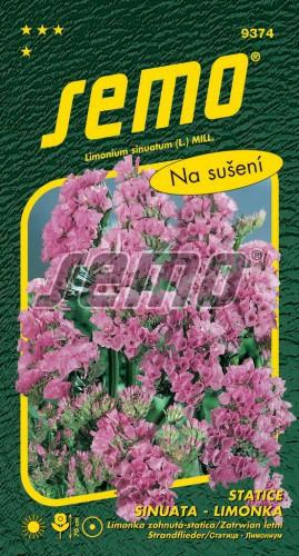 HOBBY, Květiny letničky - Statice sinuata (limonka) Rose, 9374 (Limonium sinuatum)