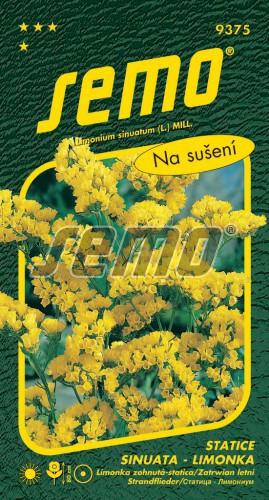 HOBBY, Květiny letničky - Statice sinuata (limonka) Yellow, 9375 (Limonium sinuatum)