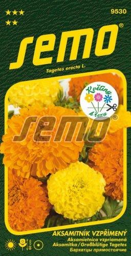HOBBY, Květiny letničky - Aksamitník vzpřímený Imperiale, 9530 (Tagetes erecta L.)