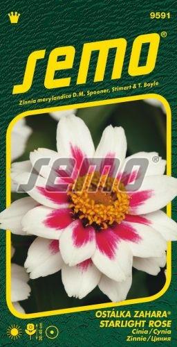HOBBY, Květiny letničky - Ostálka Zahara Starlight Rose, 9591 (Zinnia marylandica)
