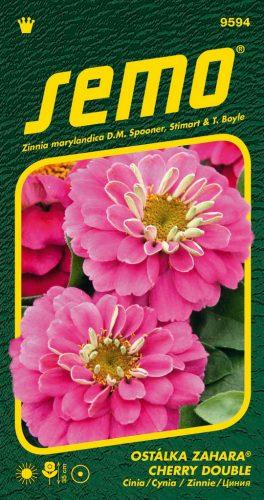 HOBBY, Květiny letničky - Ostálka  Cherry Double, 9594 (Zynia marylandica)