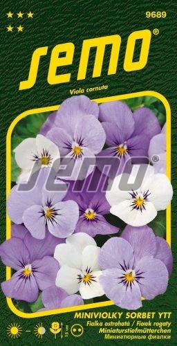 HOBBY, Květiny trvalky - Miniviolka Sorbet YTT, 9689 (Viola cornuta hybridy)