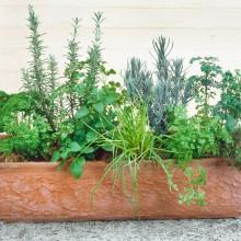 PROFI, Bylinky SEMO - Směs koření, p5975 (Herbs mixture)