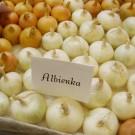 PROFI, Zelenina SEMO – Cibule kuchyňská Albienka, p0501
