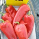 PROFI, Zelenina SEMO – Paprika roční Lydia, p2511