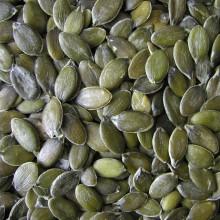 PROFI, Zelenina SEMO - Tykev olejná Apetit, p4003 (Cucurbita pepo L.var. Oleifera)