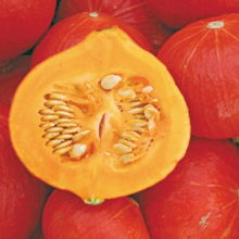PROFI, Zelenina SEMO - Tykev velkoplodá Solor F1, p4076 (Cucurbita maxima Duchesne)