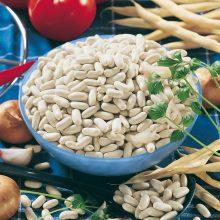 PROFI, Zelenina SEMO - Fazol obecný keříčkový Petronila, p0951 (Phaseolus vulgaris L.var. nanus (L.) Aschers.)