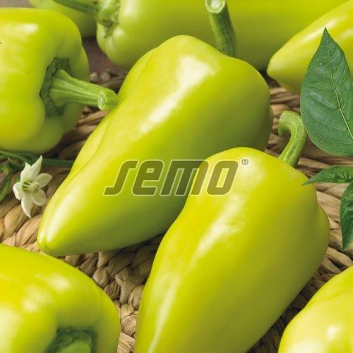 PROFI, Zelenina SEMO - Paprika roční Slavus F1, p2590 (Capsicum annuum L.)