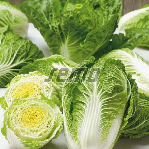 PROFI, Zelenina SEMO - Zelí pekingské Rapid F1, p4407 (Brassica rapa L.)