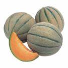 PROFI, Zelenina TAKII, Meloun cukrový, p4700 (Cucumis melo L.)