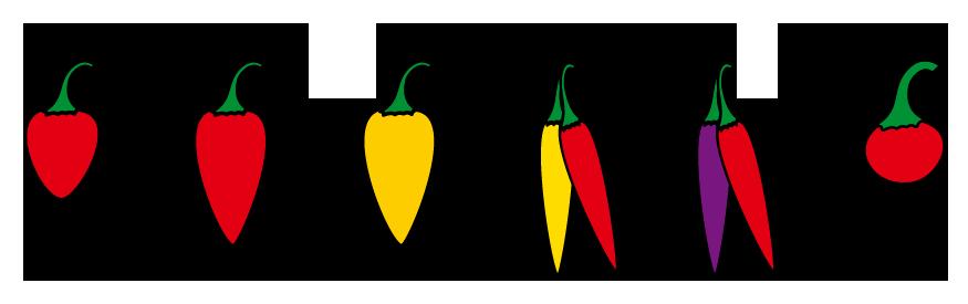 PROFI, Zelenina SEMO - Paprika roční okrasná - tvary, p2500
