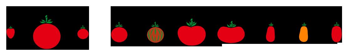 PROFI, Zelenina SEMO - Rajče tyčkové - tvary, p3200